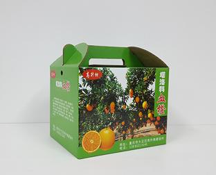 橙子水果包装盒订制